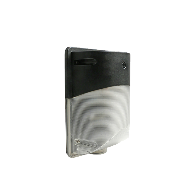 LED-Security Wall Light-IP65